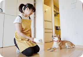 家事代行サービス ペットの世話